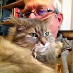Mark Whittaker looks for motivation with his cat